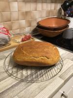 Heute zum ersten Mal gebacken aber warum ist meine Oberfläche so glatt? Ritzt ihr das Brot an bevor es in den Ofen kommt damit eine so schöne Kruste entsteht wie oben auf dem Bild?