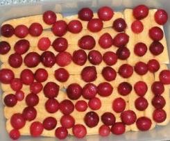 Stachelbeertiramisu mit roten Stachelbeeren