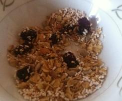 Variation von Knuspermüsli mit Cranberries