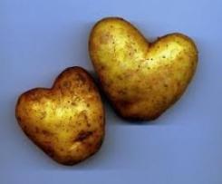 Gefüllte Kartoffeln mit Ruccola