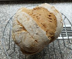 Glutenfreies Brot mit Flohsamenschalen
