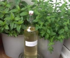 Holunderblüten-Zitronenmelisse-Erbeerminzen-Sirup