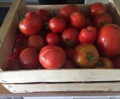 Tomatensoße (zum einkochen)
