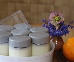 selbstgemachter Joghurt (probiotisch)
