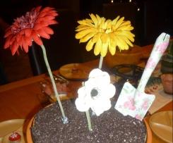 Blumenerde alá Petra
