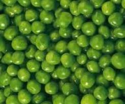 Knall grüne Erbsensuppe mit Minze