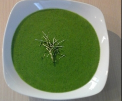Brokkoli-Spinat-Suppe (vegan/detox)