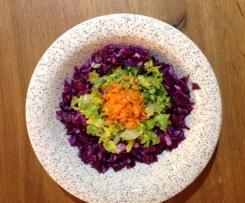 knackiger Rotkohlsalat, Rohkostsalat