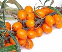Sanddorn - Birnen Fruchtaufstrich mit Ingwer & Vanille