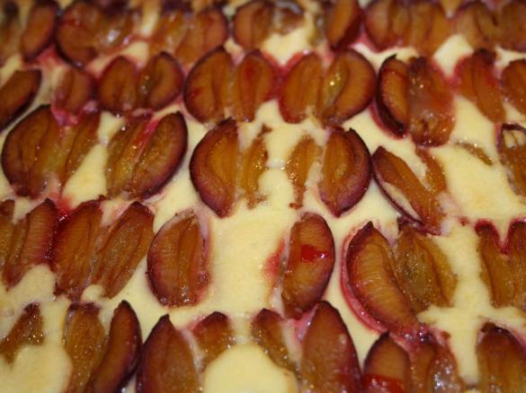 Zwetschgen Quark Kuchen Von Simanito Ein Thermomix Rezept Aus Der