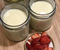 Fichtennadel-Pudding mit Honig
