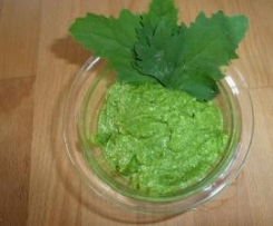 Spinat - Pesto