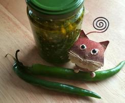 Grüne Chili Paste mit Brennnessel