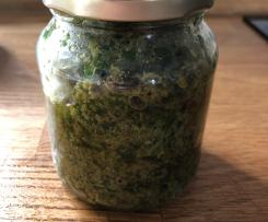 Rucola Haselnuss Pesto