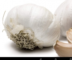 Knoblauch Bombe by Babs