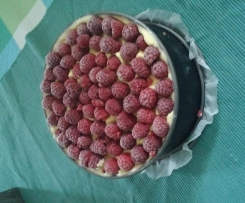 cocos Himbeere Eistorte