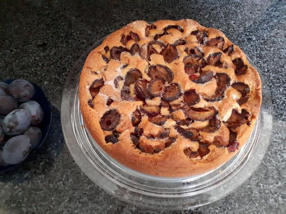 Zwetschgenkuchen Schnell Von Regniniets Ein Thermomix Rezept