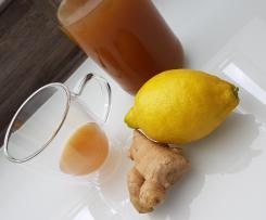 Ingwer Zitrone Konzentrat