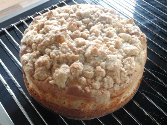 Schneller Mandarinen Schmand Kuchen Von Barny123 Ein Thermomix