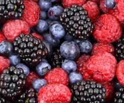 schneller Obstblechkuchen zu jeder Jahreszeit
