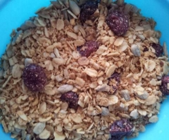 Knuspermüsli mit Cranberries