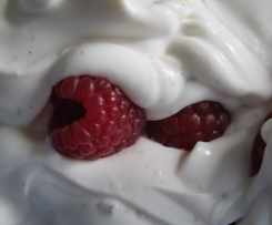 Vanille-Quark mit frischen Himbeeren