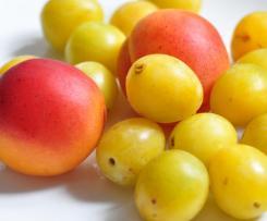 Mirabellen-Aprikosen Marmelade