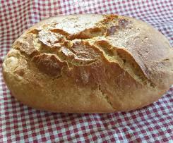 Glutenfreies Polenta Sauerteig Brot