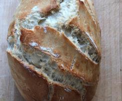 Brot mit Trockenhefe