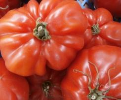 Tomatenmarmelade -mit schneller VARIANTE