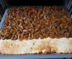 Pflaumenkuchen auf Quark-Öl-Teig (saftig noch nach Tagen)