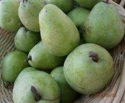 BIRNENMARMELADE  schnell und lecker fruchtig  mit 4 Variationen