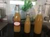 Zitronen Ingwer Sirup super bei Halsweh (Rachenputzer) RDT 02.10.2019