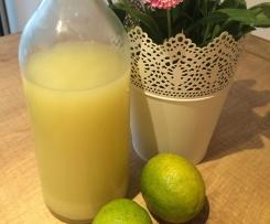 Limetten-Ingwer-Sirup max. 2 kcal je 100ml