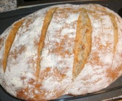 Brote nach der RUMFORT-METHODE, süß oder herzhaft - RdT am 13.11.13