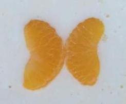 Schmetterling Kuchen Mandarinen Kase Kuchen Von Dinner For Four