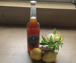 Limonadensirup mit Zitrone, Ingwer und Minze