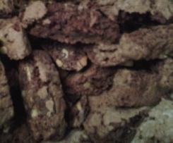 Pistazien-Biscotti (Schoko-Cantuccini )