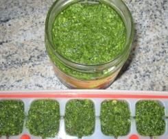 Bärlauch-Rucola-Pesto