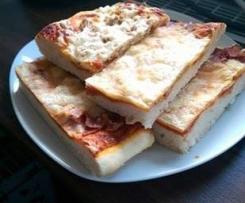 Pizza komplett, mit Teig und Sauce