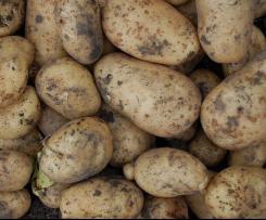 Kartoffelsuppe gegen Bauchweh - das Familienrezept meiner Oma