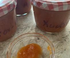 Aprikosenfruchtaufstrich mit Xucker