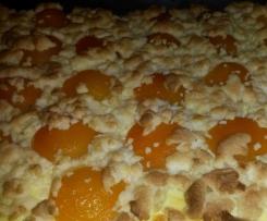Quark-Streuselkuchen mit Aprikosen