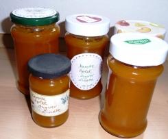 *Orangedream* Karotte-Apfel-Limette-Ingwer