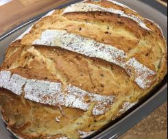 Ofenmeister-Brot ... gelingsicher und supersaftig
