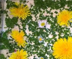 Frischkäsetorte Blumenwiese