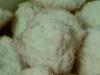 Weiße Schoko-Macadamia-Plätzchen