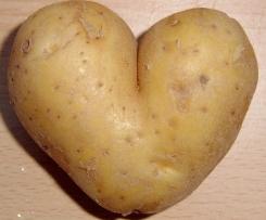 Kartoffelbrei & Gemüse mit Soße