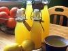 Ingwer-Orangen-Zitronen-Saft