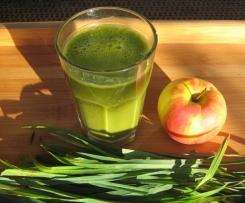 Wildgrassaft Vegan + Rohkost